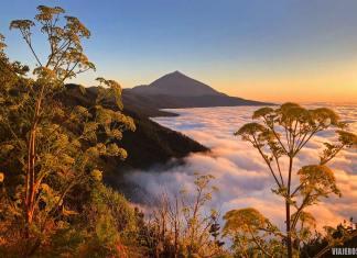 Tenerife, qué isla canaria elegir