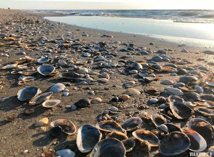 Playa Mar Negro, que ver en el Delta del Danubio.