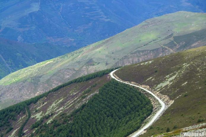 Cima del pico San Lorenzo.