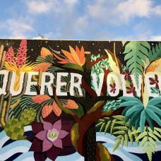 Murales de los Llanos de Ariadne, que ver en La Palma