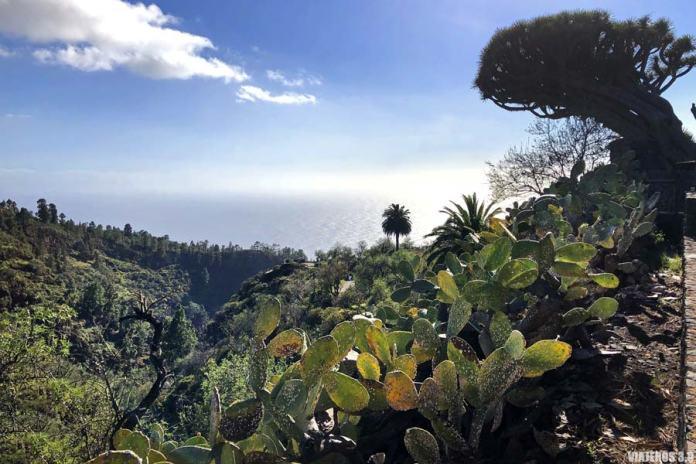 Mirador los Dragos, qué ver en La Palma