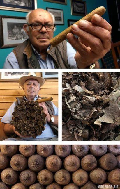 puros palmeros en La Breña Alta, La Palma