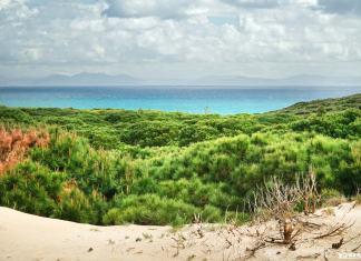 Playa de Bolonia en Cádiz, la playa más bonita de Cádiz