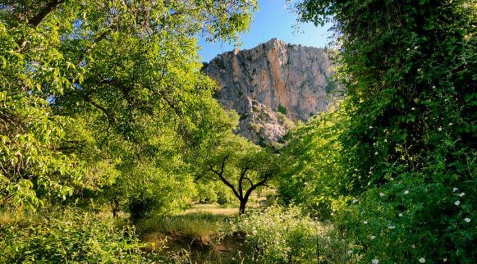 que ver en Nerpio, Albacete, Sierra del Segura