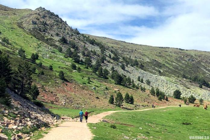 Camino de acceso a las Lagunas de Neila