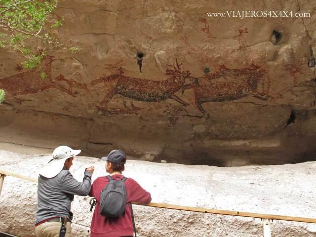 Pintura rupestre de manada de ciervos en un abrigo de Baja California