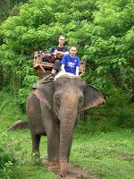 Día 8: Tailandia (Chiang Mai: Excursión Aventura con elefantes, ruta selva, carrera carruajes, descenso río, etc. Mercado Orquídeas, Bazar nocturno, Bubbles, etc).