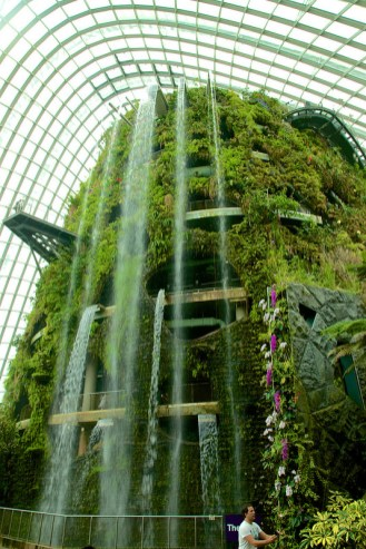 Waterfall in the Cloud Forest Dome at the Gardens by the Bay in Singapore