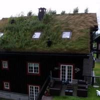 Los techos de hierba de Noruega