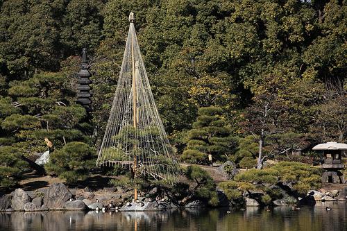 Yukitsuri: Japanese style garden