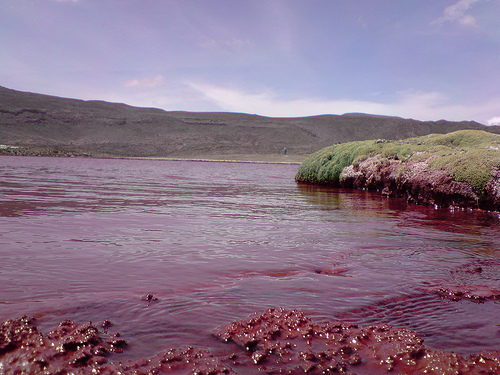 La Misteriosa Laguna Roja de Chile