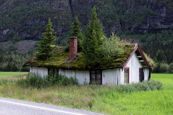 Techos de hierba de Noruega