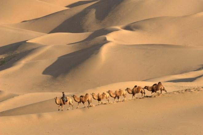 Inner Mongolia Travelogue