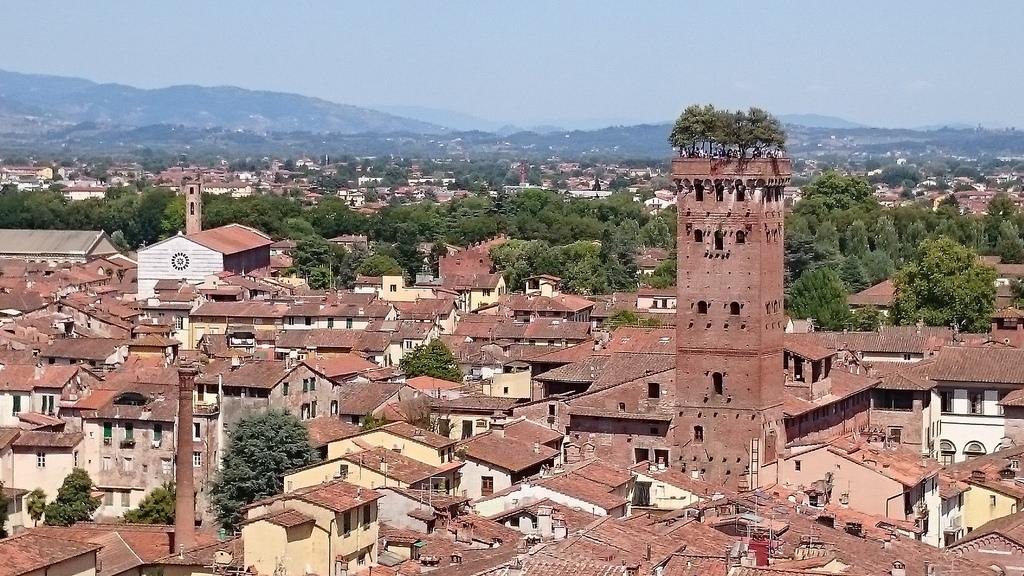 Torre Guinigi: La Torre con robles en su azotea