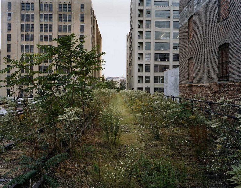 High Line - Abandoned Railway Line Becomes Elevated Park in New York