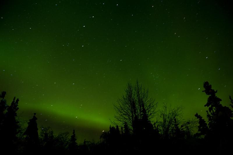Aurora Borealis, Bettles - Arctic Circle