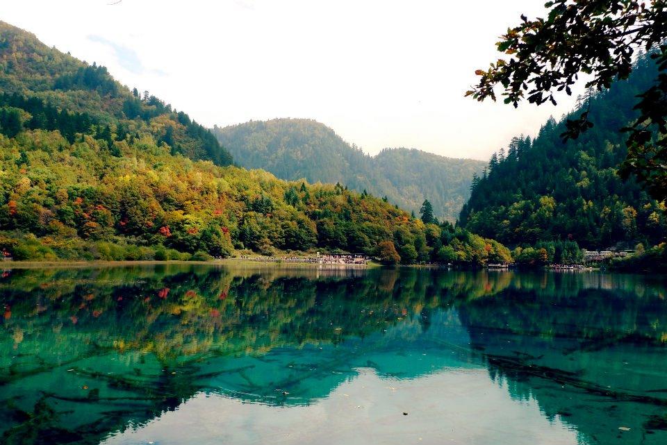 Panda Lake
