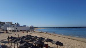 Habaneras de Cádiz