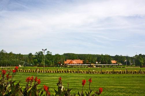A szepseg a vilag-Bajnokok brothers-haz lo hektar