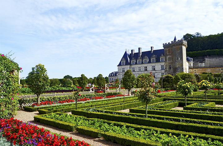 Castillo de Villandry y jardines flores colores