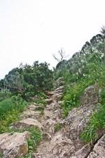 Conquistant el vessant del Parc Natural del Penyal dIfach
