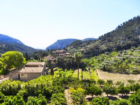 Panorámica vegetación sierra Tramontana Cartuja Valldemossa Mallorca