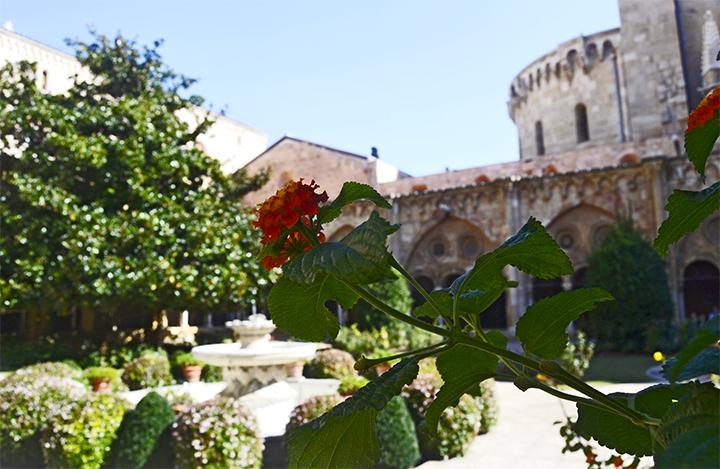 El claustre de la Catedral dorm placid a lespera de turistes