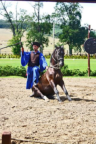 Exhibición jinetes Puszta gran llanura Hungría