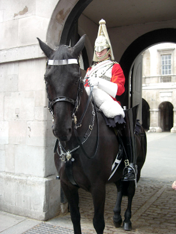 Guardia Real británica caballo Londres