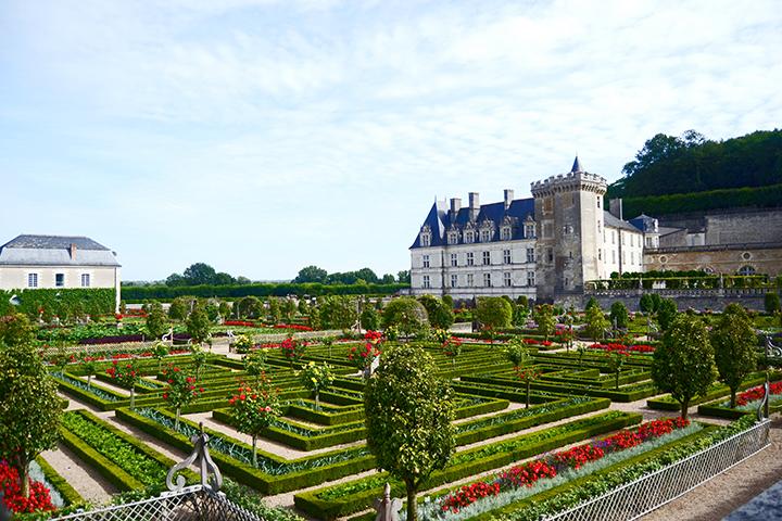 Alfombra colorista flores y plantas Villandry Francia