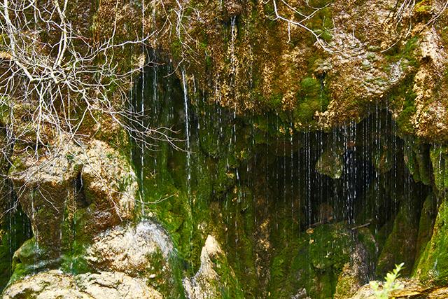 Nacimiento del rio Cuervo desde siempre Monumento Natural