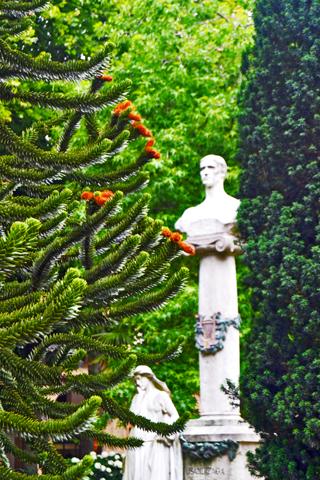 Busto escultura noble parque Plaza Guipozkoa centro histórico San Sebastián Donosti