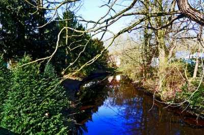 Vistas vegetación río Hunte Oldenbug Alemania
