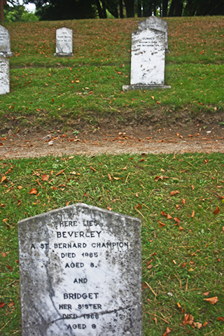 Tumba cementerio mascotas jardines Powerscourt