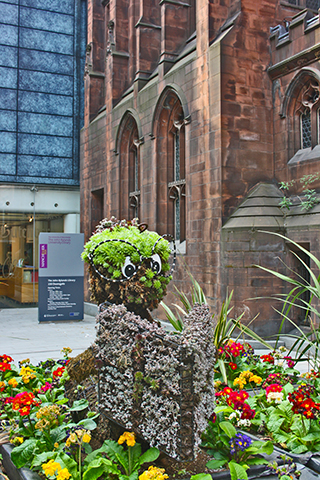 Mascota lector flores plaza Manchester