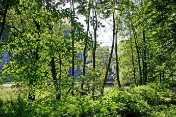 Parque nacional Ojców Polonia
