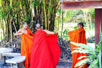 Monjes túnicas naranjas cambio templo sagrado Lampang