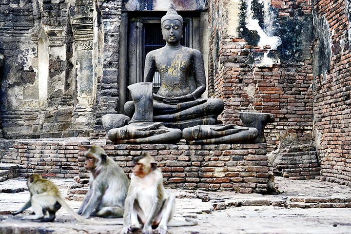 Escultura buda sentado oscuro templo monos Prang Sam Yot Lopburi