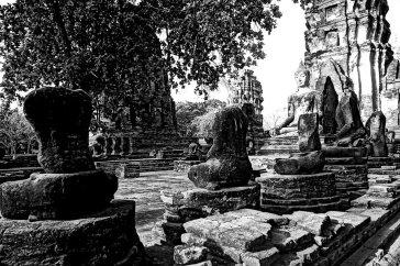 Buda torsos budistas restos ruinas Parque Nacional Ayutthaya