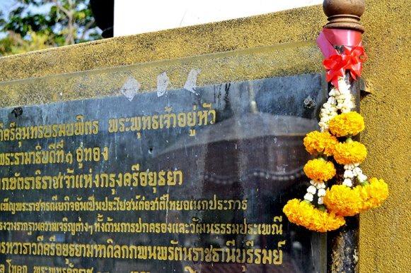 Flores amarillas sagradas templos Ayutthaya