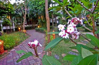 Flores de loto hotel resort Sukhothai Tailandia
