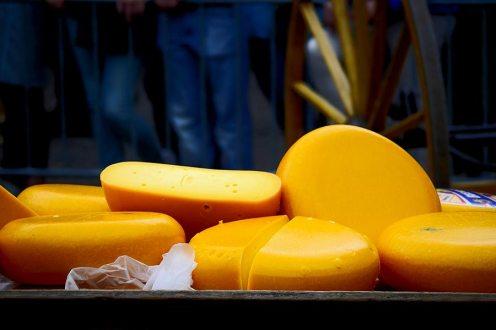 Grupo quesos Gouda Plaza mercado Alkmaar