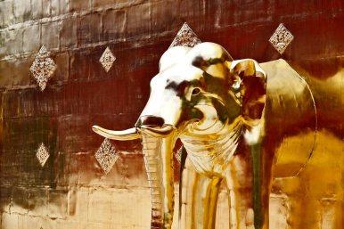 Elefante sagrado oro templo Chiang Mai