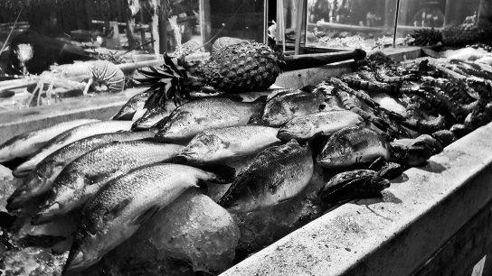 Pescados frescos grandes piña puesto callejero Ao Nang Krabi