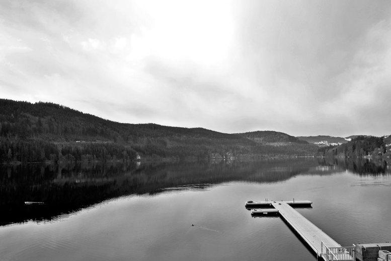 Vistas lago Titisee bosques Selva Negra Alemania blanco y negro