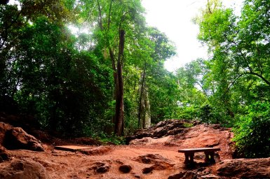 Panorámica parque natural banco tierra árboles cueva Suwan Kuha bahía Phang Nga Tailandia