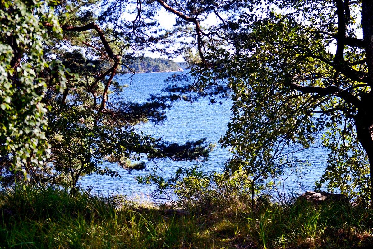 Mar archipiélago Estocolmo escondido árboles isla Grinda Suecia