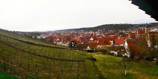 Panorámica ladera viñedos Esslingen Am Neckar viviendas
