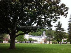 la umbría de este frondoso árbol nos acoge para disfrutar, en la distancia, de la abadía y la iglesia