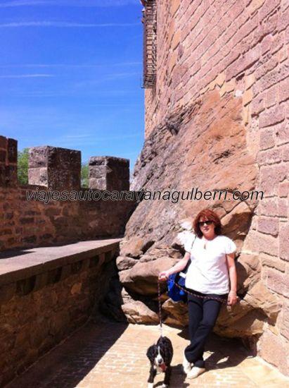 desde dentro del castillo